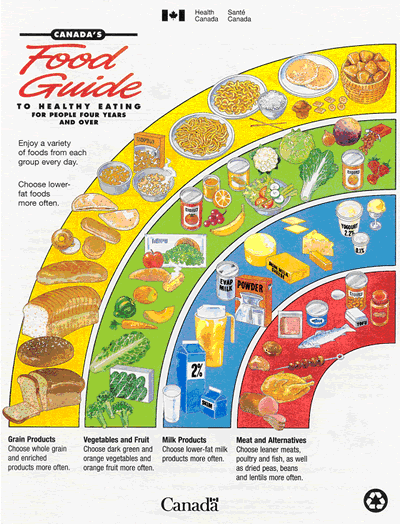 Canada S Food Guide Template Pyramid