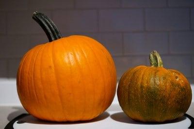 carving and baking pumpkins