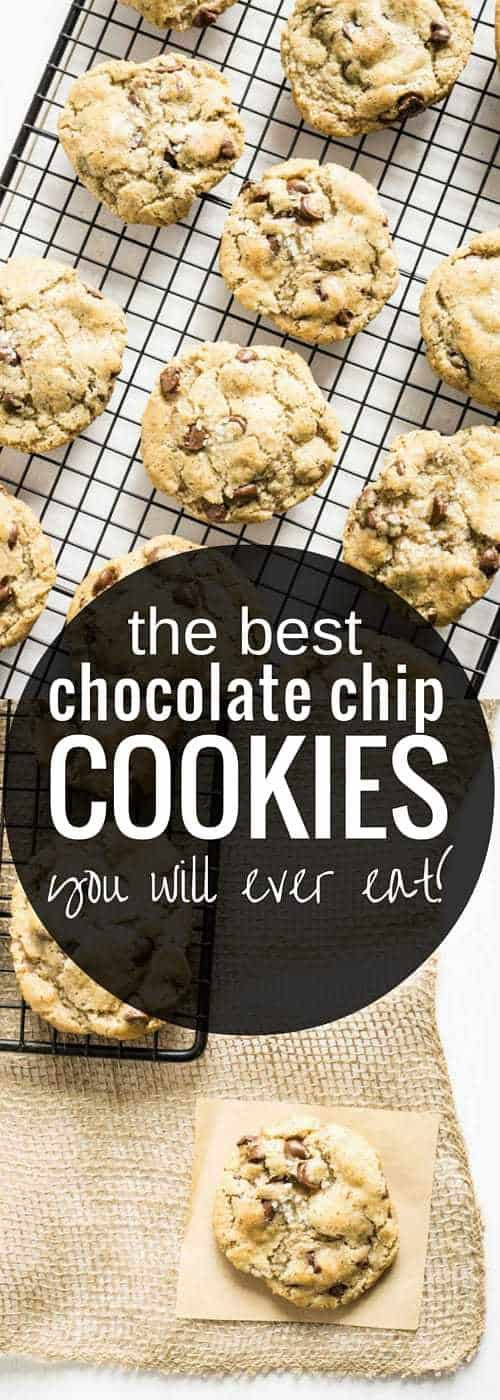 The Best Chocolate Chip Cookies you will ever eat!