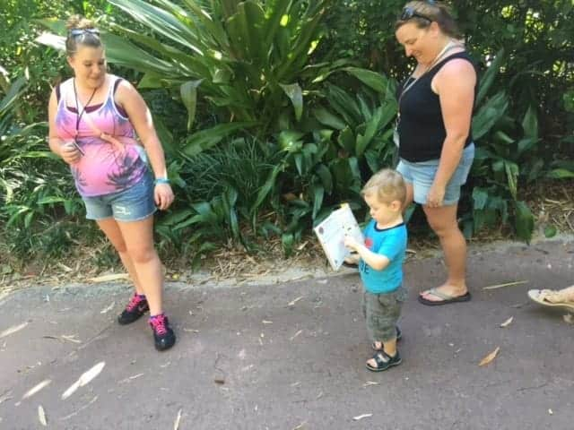 explorers guide at animal kingdom